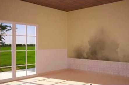 C mo quitar la humedad de las paredes noticias de luj n - Quitar humedad del ambiente ...